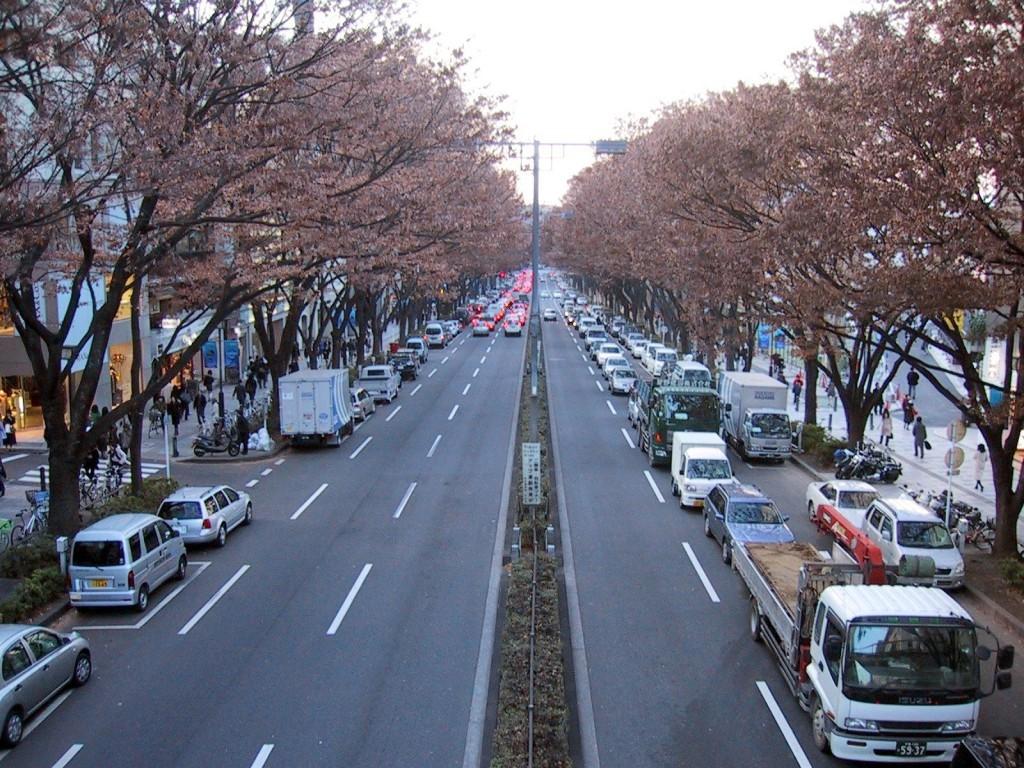 Nhật Bản - một đất nước thú vị mà bạn nên trải nghiệm