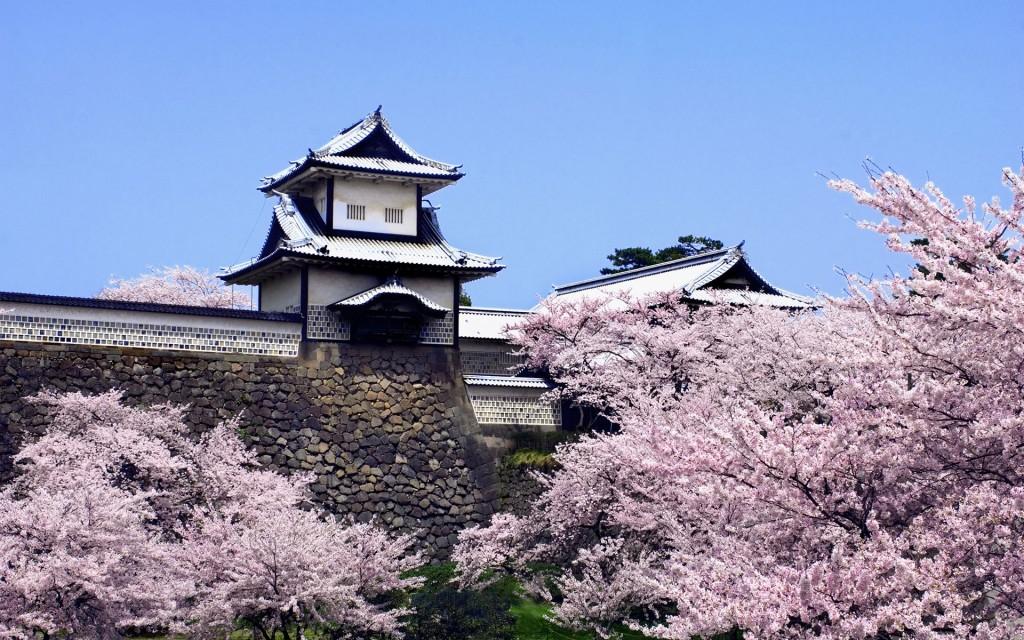 Các bạn cần chú ý một số điều quan trong khi quyết định đi du học Nhật