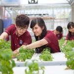 Định hướng du học Nhật Bản ngành công nghệ sinh học