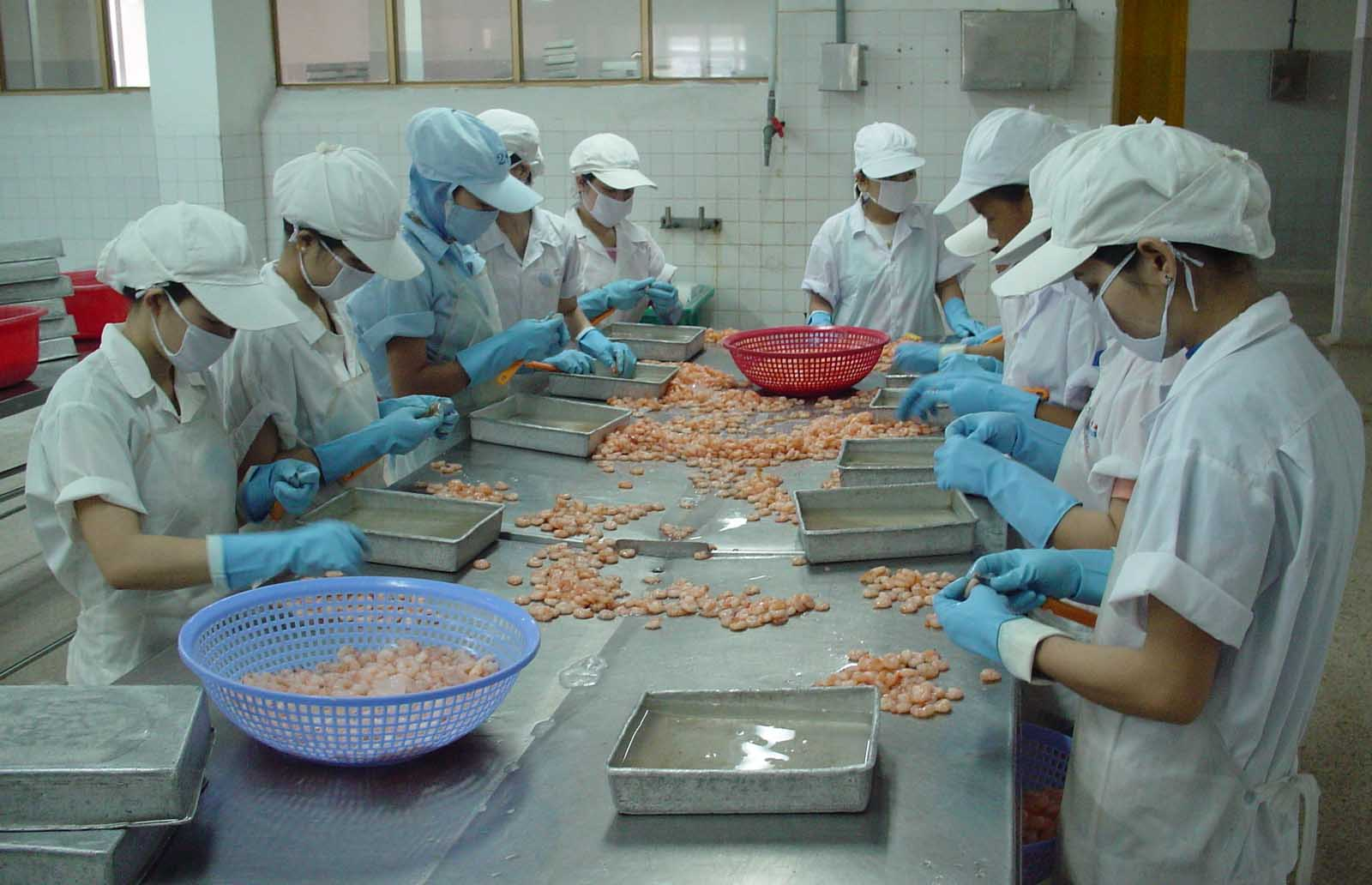Công ty cổ phần du học Thanh Giang thông báo tuyển sinh tháng 8 năm 2016 đơn hàng chế biến thực phẩm