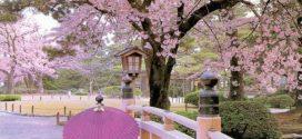 Làm thế nào để hòa nhập văn hóa Nhật Bản?