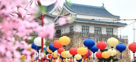 Khám phá văn hóa Nhật Bản ngay tại Việt Nam – Du học Thanh Giang